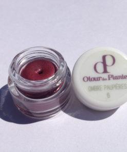Mon ombre à paupières - n°6 prune irisé