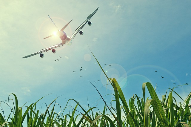 avion ecologie