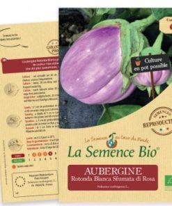 aubergine bianca rosa bio