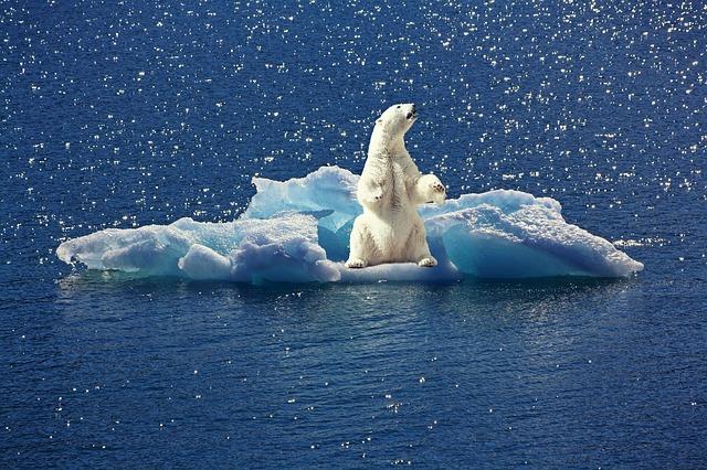 Quelles mesures devrions nous prendre pour limiter le changement climatique ?