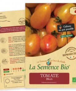 semence tomate bio