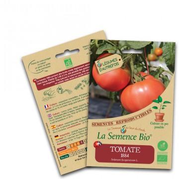 tomate 1884 bio
